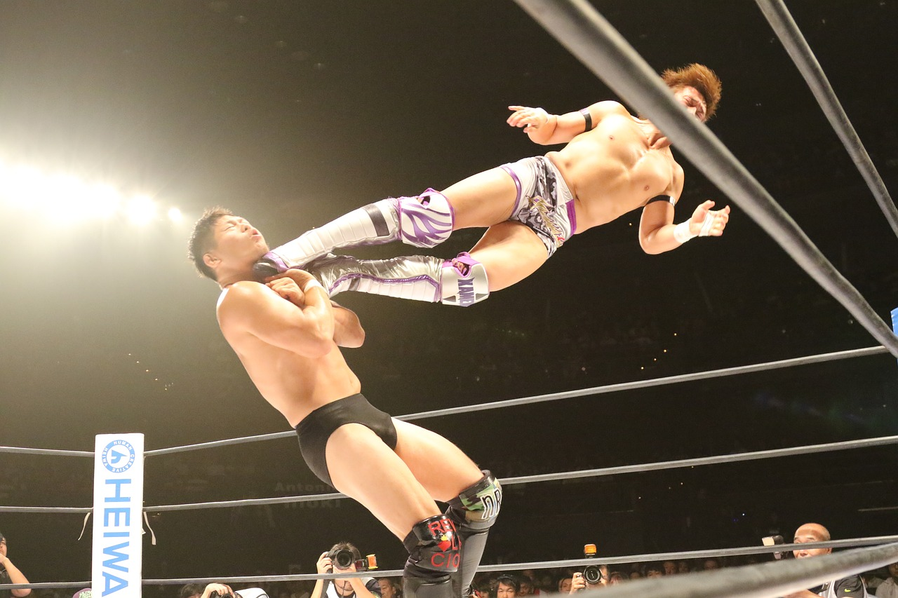 wrestling-1645823_1280.jpg